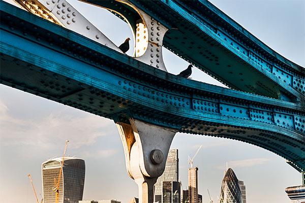 photography tour london bridges and river thames