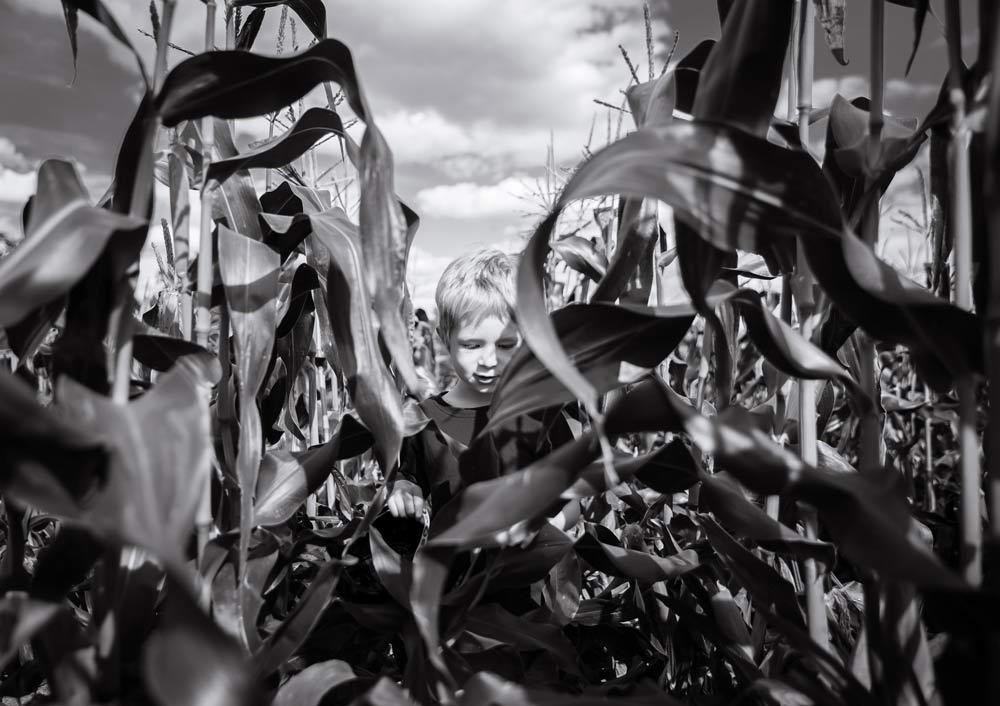Photograph by Julia Sedinkina